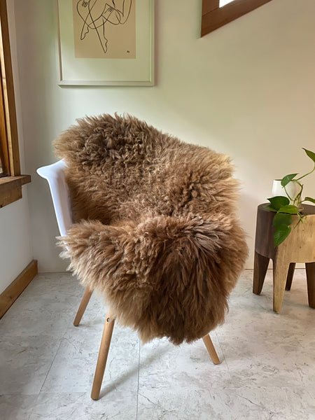 "Textured Longhair ""Pumpkin Pie"" Sheepskin"