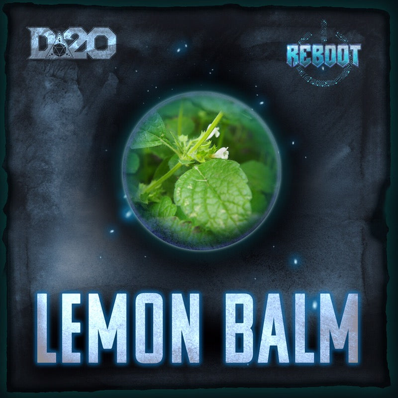 LEMON BALM : FETCH THE APOTHECARY