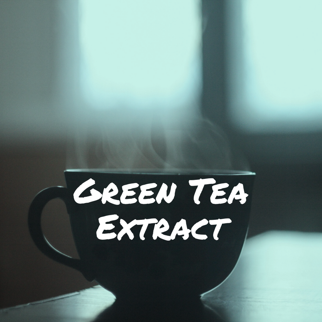 Ancient Herbs: Green Tea, Extract of Wellness