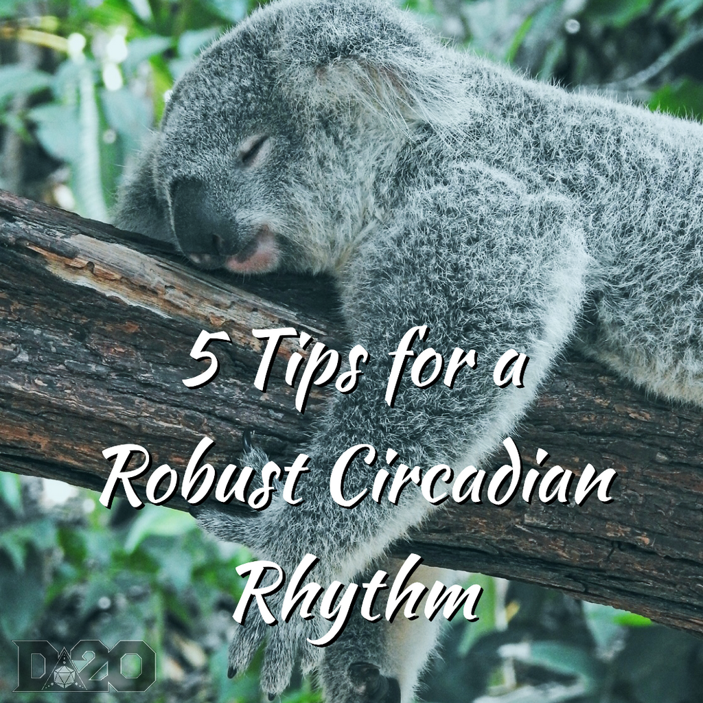 Reboot: 5 Tips for Your Most Robust Circadian Rhythm