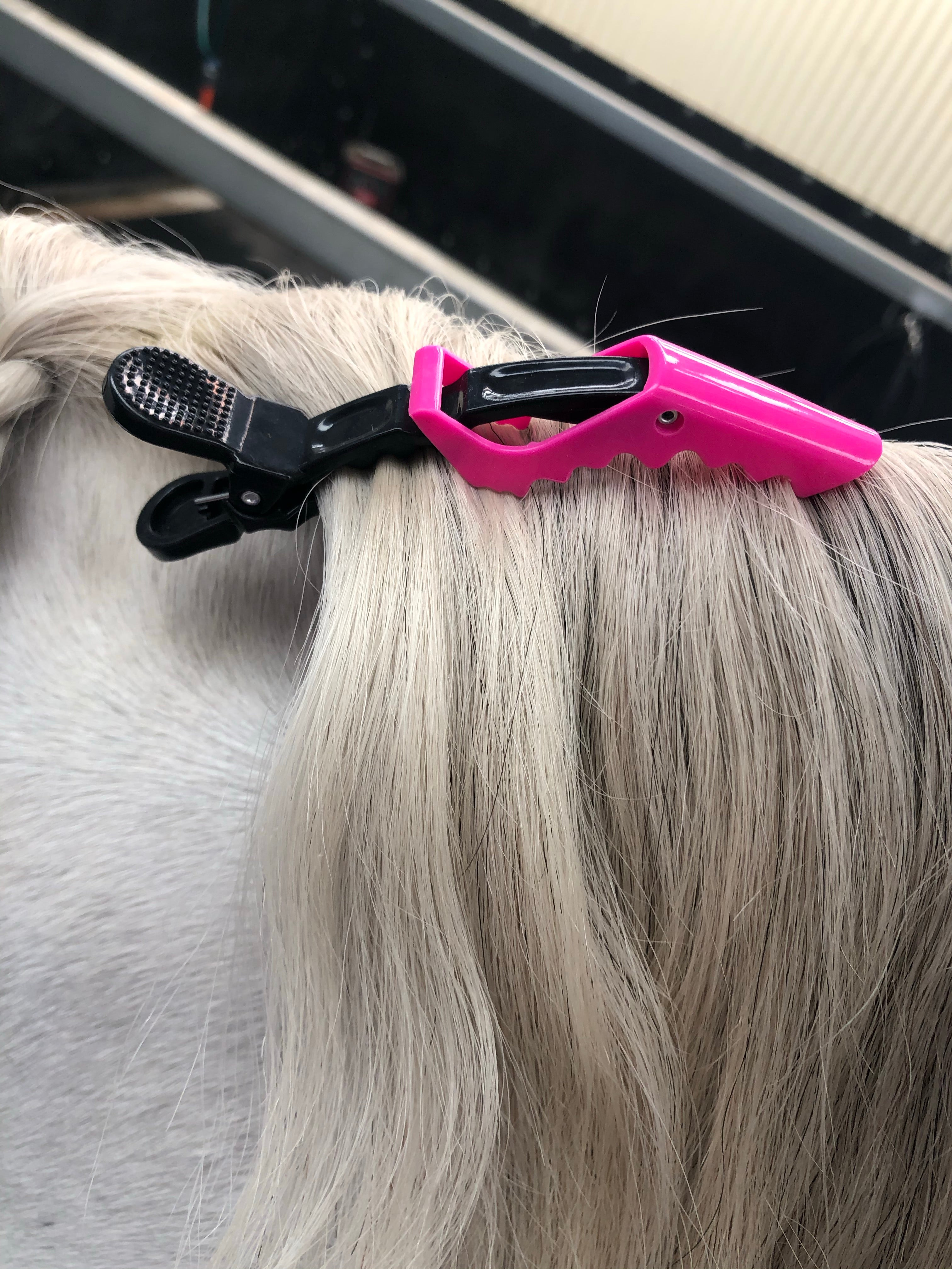 Equine plaiting clips
