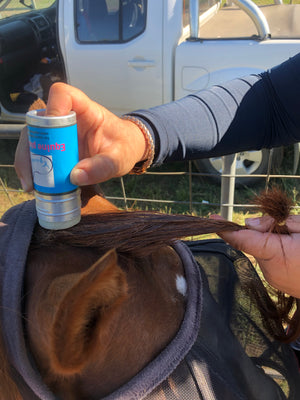 Equine plating wax