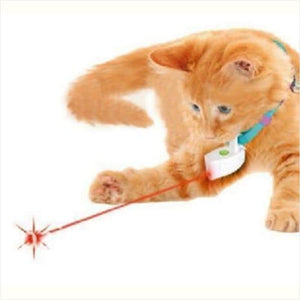 Laser Chase Collar for Cats - Laser Cat Toy - Free Shipping