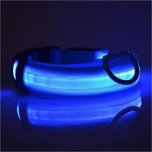 Night Safety Glow Collar - Collar - Free Shipping