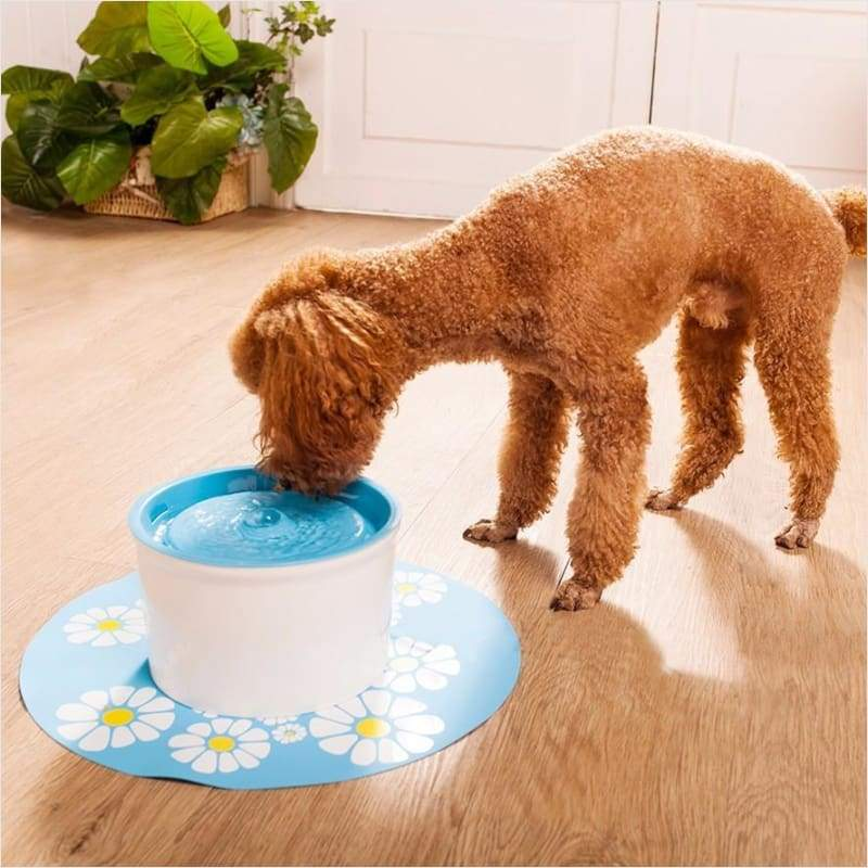 Water Purifier Fountain for Pets (1.6L) - Water Fountain - Free Shipping