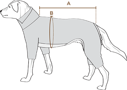 the furryfolks TO MEASURE YOUR DOG FOR A APPAREL