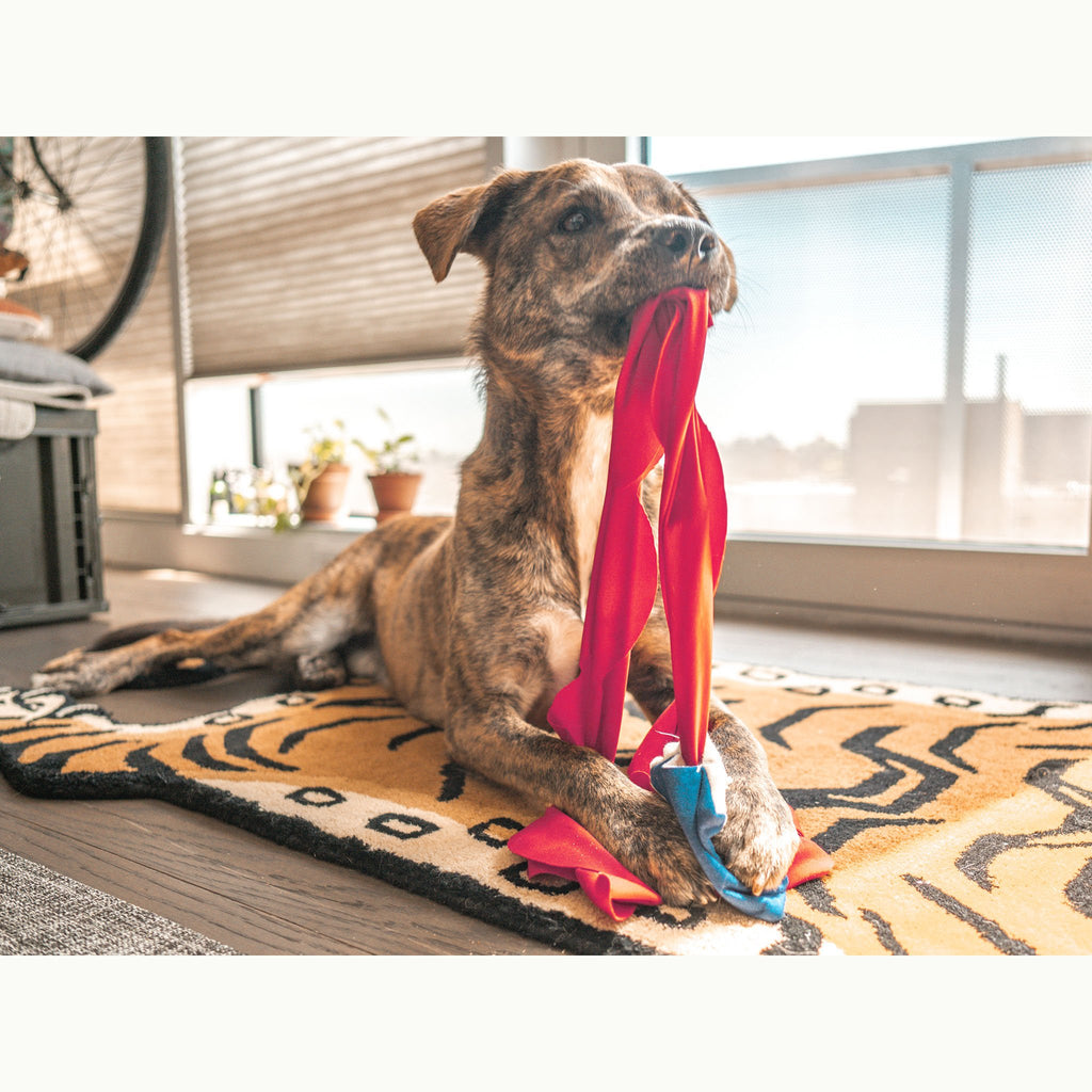 the furryfolks - Semo Dog Toy (Nosework)