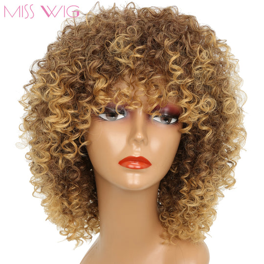 MISS WIG 16Inches Long Afro Kinky Curly Wigs for Black Women Blonde Mixed Brown Synthetic Wigs-WeaveKINGDOM.com