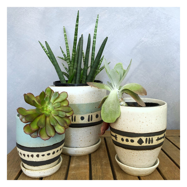 handmade plant pot indoor plants perth