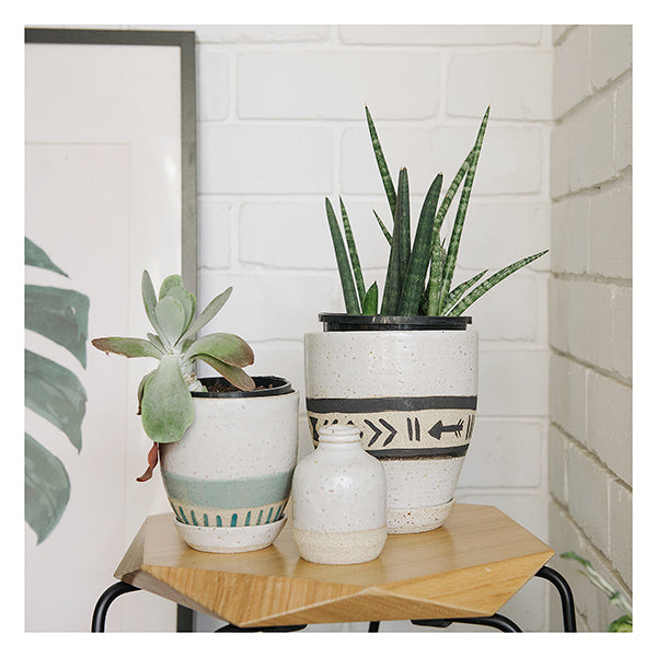 handmade plant pot perth jungle