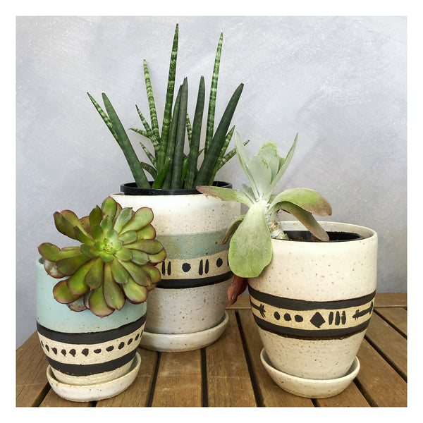 handmade planter perth succulents