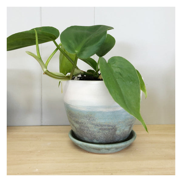 indoor plant perth handmade ceramic planter