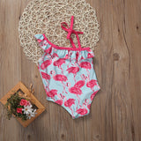 Flamingo Swimsuit