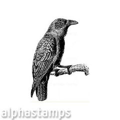 Raven on a Branch Rubber Stamp