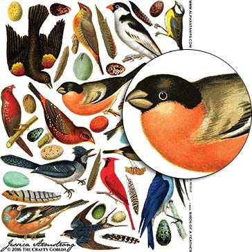 Birds of a Feather Collage Sheet