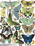 Butterflies & Moths Collage Sheet