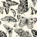 Black & Ivory Butterflies Scrapbook Paper