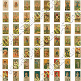 Dollhouse Baseball Card Collection Collage Sheet