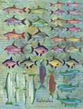 Fishtales Collage Sheet