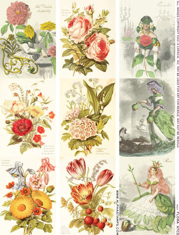 Flora ATCs Collage Sheet