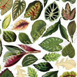 Leaves Collage Sheet