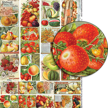 Mini Vintage Fruit Catalog Covers Collage Sheet