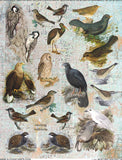 Nesting Instincts Collage Sheet
