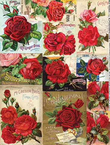 Red Roses Collage Sheet