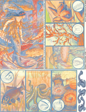 Sea Trading Cards Collage Sheet