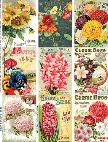 Seed Catalog ATCs Collage Sheet