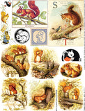 S for the Squirrel Collage Sheet