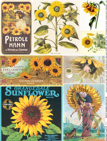 Sunflowers Collage Sheet