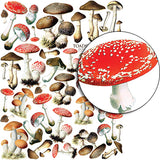 Toadstools Collage Sheet