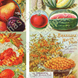 Vintage Fruit Catalog ATCs Collage Sheet
