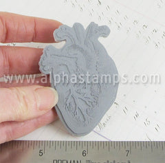 Anatomical Heart Cling Stamp