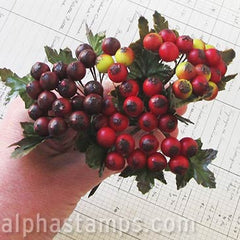 Mixed Matte Red, White & Burgundy Berry Sprigs*