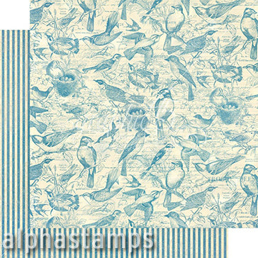 Bird Watcher Flock Together Scrapbook Paper
