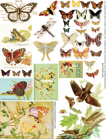 Butterflies Collage Sheet