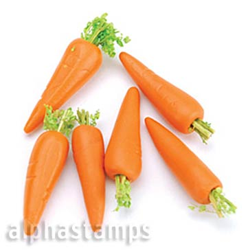 Miniature Carrots*