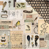 Anthology Scrapbook Paper - Ephemera