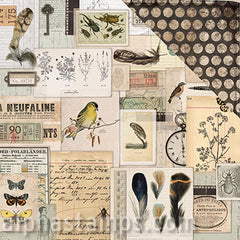 Anthology Scrapbook Paper - Ephemera - SOLD OUT