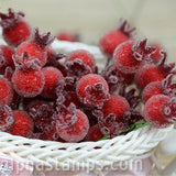 Frosted Berry Picks - Single Stems