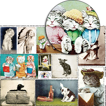 Funny Pets Collage Sheet