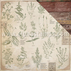 Anthology Scrapbook Paper - Herbs & Antique Wood