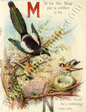 M for the Magpie Collage Sheet