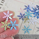 Large Snowflake Sequin Mix*