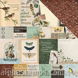 Anthology Scrapbook Paper - Antiquity Note Cards - SOLD OUT