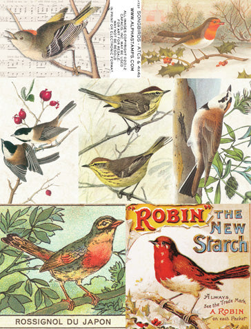 Songbirds - ATCs & 4x4s Collage Sheet