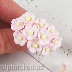 Tiny Mulberry Blossoms - Light Pink*