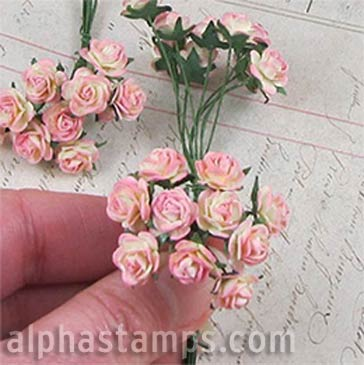 Tiny Paper Roses - Pink Cream Variegated